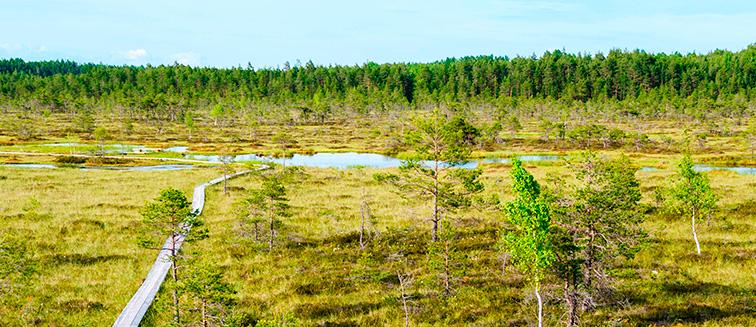 Sooma National Park